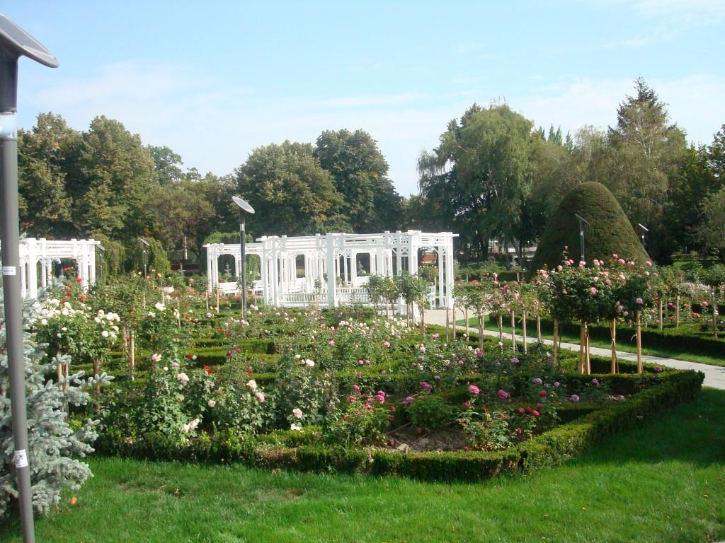 Parcul Rozelor - un colț de Rai
